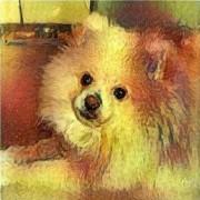 SnowGushiGit Ogushi's avatar