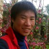 Profile photo of nguyendam