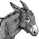 Boldewyn avatar
