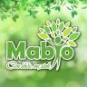 Mabio - Lợi Sữa, Dáng Thon - Hết lo Mất Sữa, Ít Sữa, Tắc Sữa