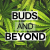 Profile picture of budsandbeyond