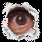 Profile picture of dvbivs