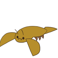 kingkonchu