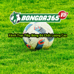Profile picture of bongda365vip
