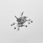 Avatar for Liz Chapman
