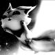 AST Raposo's Forum Avatar