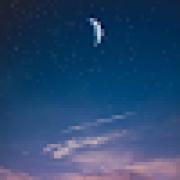 Sol Park's avatar