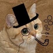 MrOwen's avatar