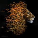 الصورة الرمزية Lion94