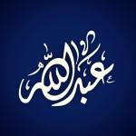 الصورة الرمزية عبدالله رضوان