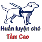 Profile picture of huanluyenchotamcao