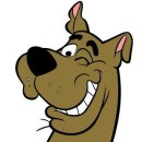 Profile picture of scooby