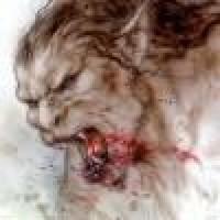 Kyrill Detinov's avatar
