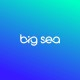 Profile picture of Big Sea