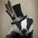 Lazy Badger