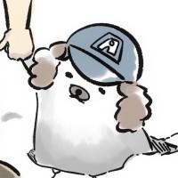 Meshi avatar