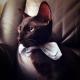 李浩正的 gravatar icon
