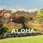 Life Insurance for Hawaii
