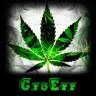 GroErr