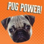 Profile picture of jointhepugs