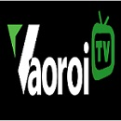 Profile picture of dbtt vaoroitv