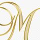 Moshe Strugano | Moshe Strugano and Co Law Firm