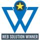 Web Solution Winner