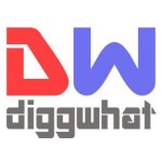 Profile picture of DiggWhat