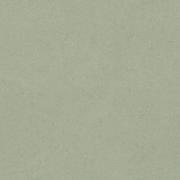 gisonrg