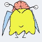 Profile picture of alberto