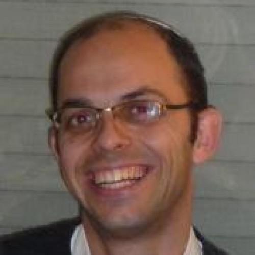אריאל שפירא