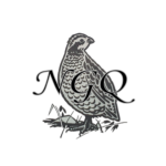 Profile picture of ngquail