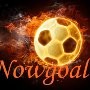 Profile picture of nowgoal-predictions