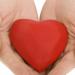 indiacardiacsurgery