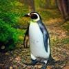 Christophe Cerisara's profile picture
