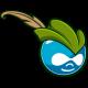 Standaard avatar