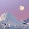 Tamaki avatar