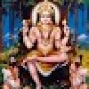 Narayana M