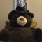 Profile photo of The Powershell Bear