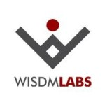 Profile picture of WisdmLabs