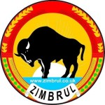 Profile picture of zimbrul