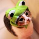 Moosecup's avatar