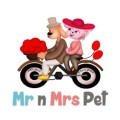 Mr N Mrs Pet: Isnare.com Free Articles Author