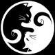 K1TT3N's avatar