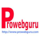 prowebguru