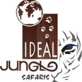 idealjungle