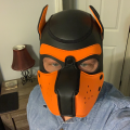 Profile picture of PupSonic