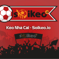 Profile picture of soi tilekeo