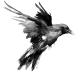 AchyuthC's avatar