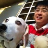 Profile photo of Zheng1212